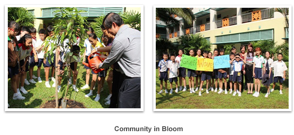 community_bloom