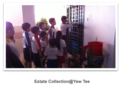 estate_collection